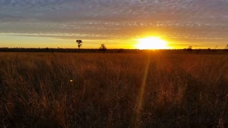 Australian Sunset / Sunrise Landscape