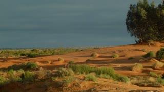 Australia's red center Sand dune desert outback landscape