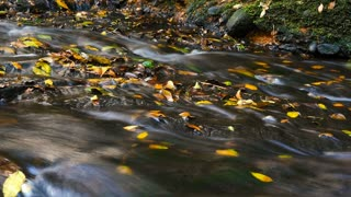 Beauty of nature unspoilt fresh water flowing over rocks autumn colors
