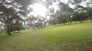 Crash racing drone quad copter flying FPV through trees in park