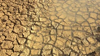 Drought Mudcracks or desiccation cracks