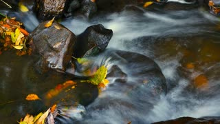 Environment scenic natural brook cold clean water flowing in a stream