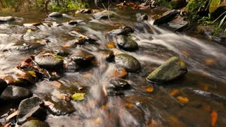 Fresh natural spring water cascading over stones autumn colors
