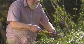 Gardening grandfather senior retired elderly mature adult retirement age