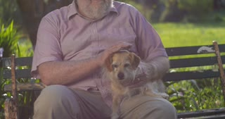 Happy smiling portrait of senior retired elderly male grandfather with dog