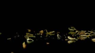 Medical drug marijuana pot weed buds falling onto mirror black background