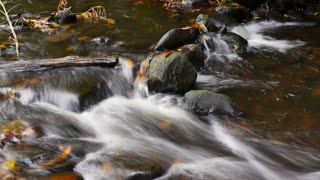 Natural fresh water flowing over rocks autumn colors outdoors