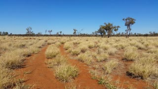 Off Road in Outback Australia Landscape Red Desert Sand and Dry Arid Grasslands