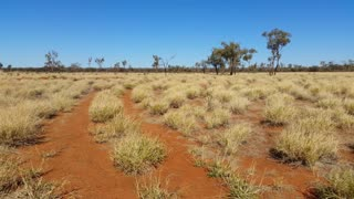 Outback Dirt Road Australia Landscape Red Desert Sand and Dry Arid Grasslands