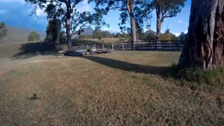 Quadcopter multirotor racing drone trough trees on farm aerial footage