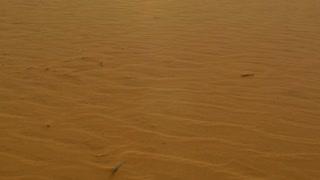 Sunlight over Sand dune desert outback Australia landscape