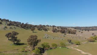 Aerial drone shot rural Australia agriculture farming field landscape