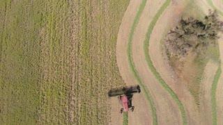 Agricultural crop harvesting field farming rural Australia Aerial footage