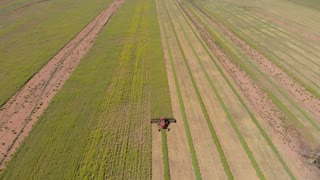 Australia Aerial Canola crop harvest agriculture farming landscape
