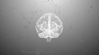 Brain used for thinking artificial intelligence neural network