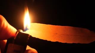 Bush fire arson igniting leaf with cigarette lighter