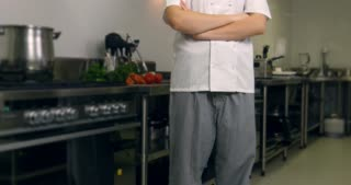 Chef cook working in hospitality industry kitchen