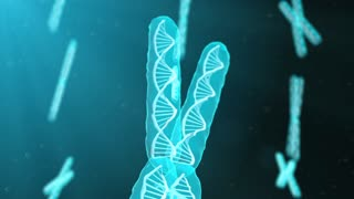 Chromosome genetic research into biochemistry in the DNA of human genome
