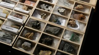 Geology mineral collection of various sedimentary metamorphic and igneous rocks