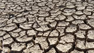 Hot Climate Change Drought Disaster Cracked Mud from Global Warming
