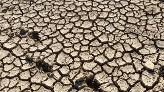 Hot Drought Cracked Clay Mud Dust Pan of Dry River Bed