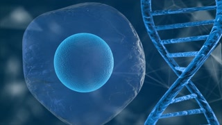 Human genome mapping research of human DNA and genes molecular chemistry