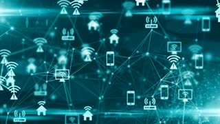 Internet of things (IoT) network of physical devices with network connectivity