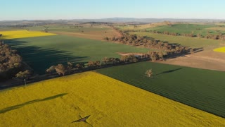 Rural Australia crop farming agricultural landscape - Aerial drone shot