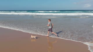 Slow motion of male jogger on beach running and playing with dog
