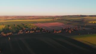 Sunset aerial footage of crop field agriculture farmland Australia