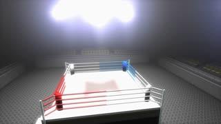 Boxing ring, sport, light, stadium, kickboxing, arenachampionship, sport.
