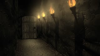 castle, passageway, tunnel, corridor, torch, light, wall, interior, medieval