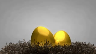 Golden egg and nest, concept, value, animal, fetus, gold.