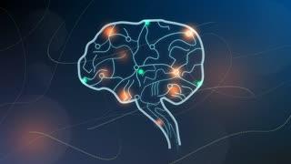 Human brain nodes, neuron system