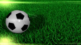 Sports background, soccer, ball, field, grass.