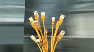 Yellow network cables, with alpa matte.