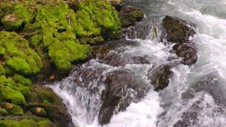 Dreamy Waterfall Wild Beauty Nature Like Tale