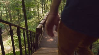 A young man in a casual denim shirt and yellow trendy trousers down stairs, walking on a wooden bridge and looking sideways rear back view