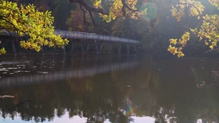 Beautiful view on the river or lake with bridge. magnificent landscape with colored leaves on the trees. Gold autumn in the park sunny day. paysage greenwood in fall