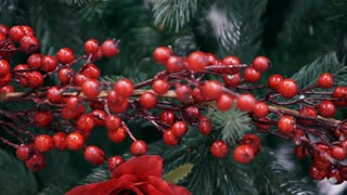 Decorative branch with red berries.  4k Video 3840x2160