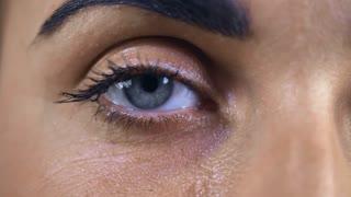 blue, eye, blue eyes, black ,eyebrow , eyelashes, close up, details