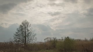 Cloudy clouds move very fast, the sun shines, grass and trees winds the wind High quality 10bit footage. Very easy color correction