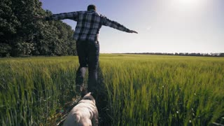 Man woman and dog running at the field with green plant rear back view. Couple wearing casual shirt and jeans fool around at the open air. Happy people enjoy freedom in summer season in the