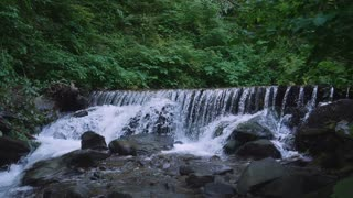 mountain river surrounded green foliage. Amazing nature view slow motion