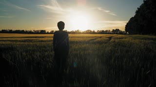 Woman standing at field with young wheat at sunset. Rear back view female looking on the evening sky with breathtaking sundown. Unit with nature in summer season
