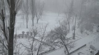 Winter snow blizzard town trees fast time lapse. Cold icy weather and season. 4k video