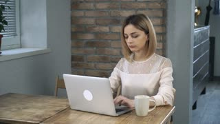Young woman working at the laptop