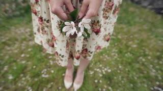 Beautiful closeup of woman's hands with white apple petals.