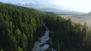 Aerial View. Flying over the beautiful mountain River and beautiful forest. Aerial camera shot. Altai, Siberia. 4k slow motion aerial shot.