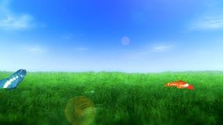 Butterflies couple meet on a green field